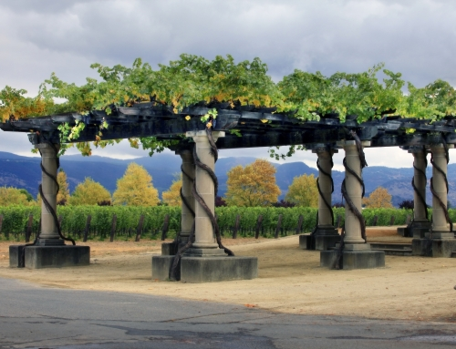 Napa Winery Tour with Platypus Tours